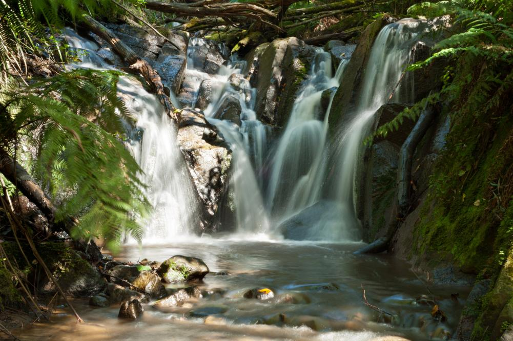 Dandenong Ranges, Olinda Falls, near Melbourne Australia 2