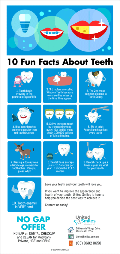 10-Fun-Facts-About-Teeth
